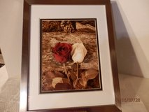 Framed Rose Picture in Aurora, Illinois
