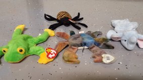 ty-beanie babies in Plainfield, Illinois