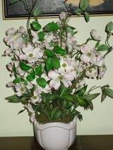 "flowers in white ceramic pot-21""h in St. Charles, Illinois"