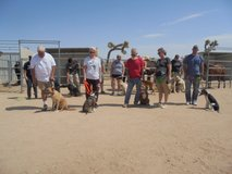Dog Training: Obedience, Agility and more... in 29 Palms, California