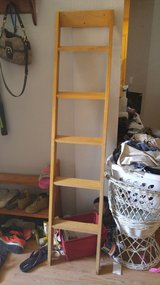 Bunk bed ladder in The Woodlands, Texas