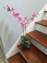 Fake orchid plant in Houston, Texas