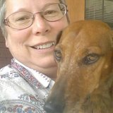 Your Pet & House Sitter in Alamogordo, New Mexico