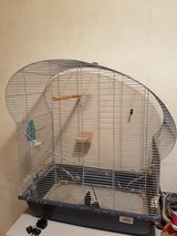 Bird cage plus two singing canaries in Wiesbaden, GE