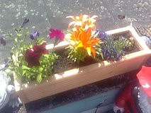 Flower pots 100 cm long, 6 available in Ramstein, Germany