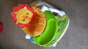Lion Chair w/tray in San Clemente, California
