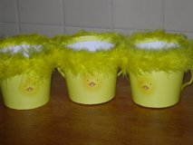 cute chick baskets in Glendale Heights, Illinois