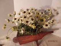 Cream Daisies in Wooden Wheelbarrow in Aurora, Illinois