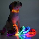 Red/blue light up dogs collar in Fort Irwin, California