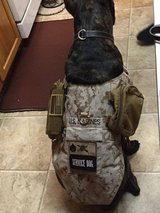 Custom Made Dog Vest & Patches [Service Dog Vest/Harness] in Fort Belvoir, Virginia