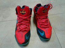 Lebron  Nike 9s in The Woodlands, Texas