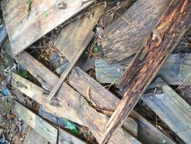 Free wood in Kingwood, Texas