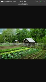 Vegetable Garden Space in Houston, Texas