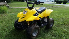 110 youth atv in Todd County, Kentucky