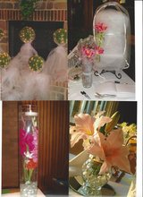 Wedding, Party, Shower Items in Sandwich, Illinois