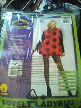 Lady's lady bug outfit in El Paso, Texas