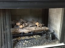 Double-Sided Gas Fireplace Insert with Logs in Wilmington, North Carolina