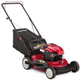 TROY-BILT TB110  PUSH MOWER in Liberty, Texas
