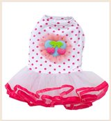 Tutu Dog Dress in Kingwood, Texas