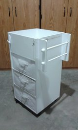 Reflections Craft Storage Cart in Belleville, Illinois