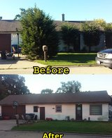 Tree and bush removal in Joliet, Illinois