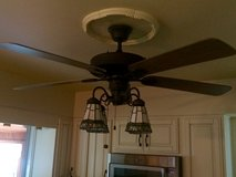 Ceiling fan with light fixture in Naperville, Illinois