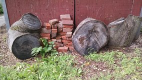 Free Firewood in Morris, Illinois