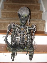 "AWESOME HALLOWEEN ""SKELETON"" DECORATION in Camp Lejeune, North Carolina"