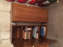Cabinet both for $40 in DeKalb, Illinois