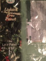 LACE LIGHTED CHRISTMAS Curtain PANEL in Norfolk, Virginia