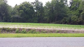 Farm Land 18 acres for Sale or Trade in Camp Lejeune, North Carolina