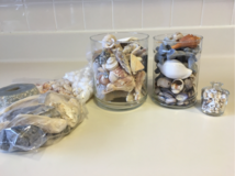 Various shells in Phoenix, Arizona