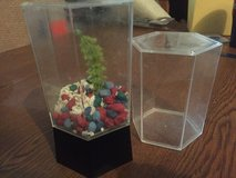 2 plastic Betta fish bowls in Plainfield, Illinois