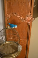 Antique Wrought Iron & Brass Bird Canary Cage With Stand Ornate in Plainfield, Illinois