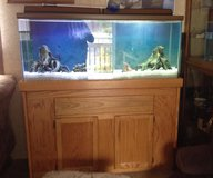 55 Gallon Fish Tank with Stand in Shreveport, Louisiana