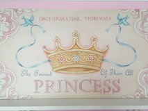 Princess Canvas Frame Pink Picture in Naperville, Illinois
