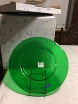 Villeroy & Boch large green charger plates in Fort Leonard Wood, Missouri