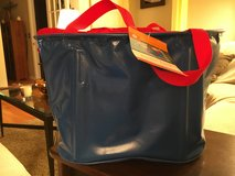 Picnic Tote in Plainfield, Illinois