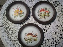 "4  decoration plates ""Birds of the Forest"" in Ramstein, Germany"