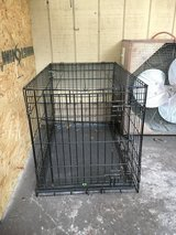 Large dog cage in Beaufort, South Carolina