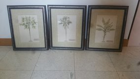 Palm tree wall art in Orland Park, Illinois