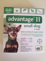 Advantage II for small dog(New) in Fairfield, California