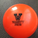 New Dog Ball Strong Varisty Pets in Chicago, Illinois