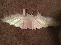 Angel Wings for Dogs [Halloween Costume] in Beaufort, South Carolina