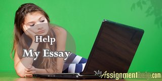 Receive Evaluative Essay Support from Experts at MyAssignmenthelp.com in Hemet, California