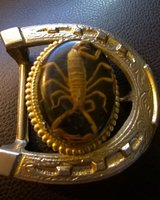 scorpion belt buckle in Yucca Valley, California