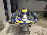 90mph+ Racing Go Kart - 125cc Rotax in Fort Campbell, Kentucky