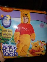 Winnie the Pooh Costume for Halloween or Dress Up in Nellis AFB, Nevada