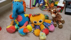 Adorable stuffed animals in Fort Meade, Maryland
