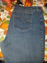 Women's Plus Size 28s REDUCED AND UPDATED in Alamogordo, New Mexico